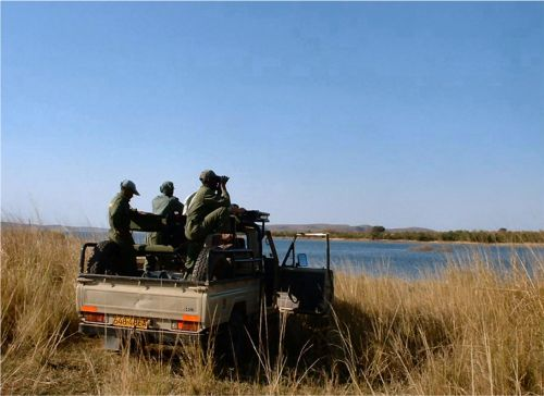 Zindele Safaris hunting photos.